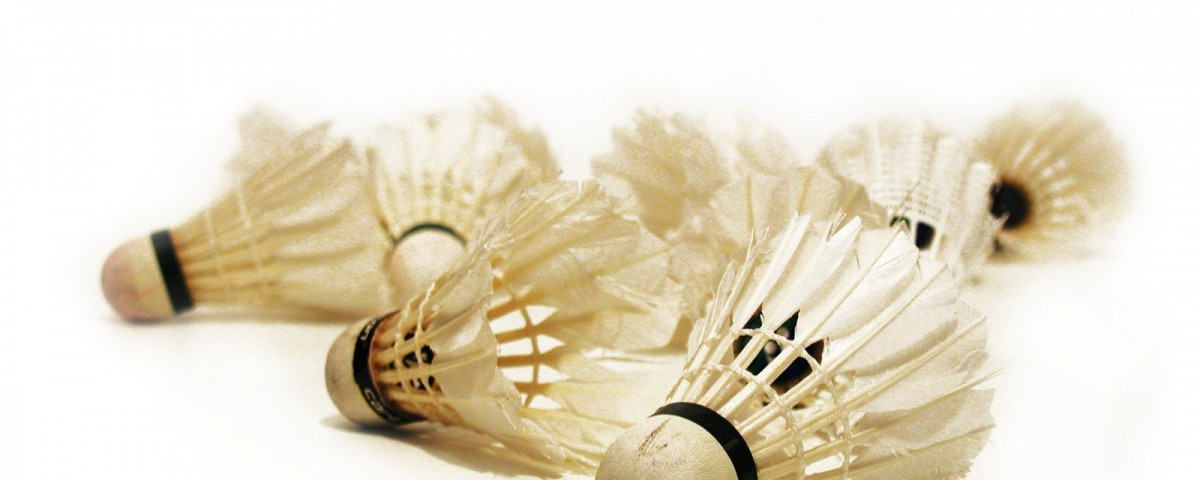 Badminton Federbälle